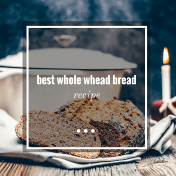 best-whole whead bread recipe